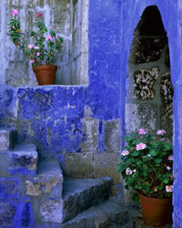Stairs & Geraniums, Santa Catalina Monastery Arequipa, Perú
