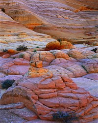 Painted Mounds & Cliff at Dawn Paria River - Vermilion Cliffs Wilderness (Utah/Arizona)