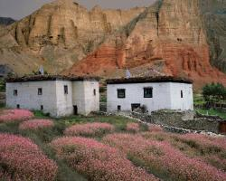 Two Houses, Buckwheat Blossoms and Cliffs, Dhakmar